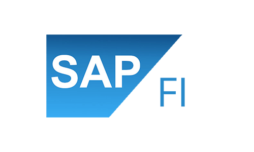 SAP FICO Test (Financial Accounting & Controlling)